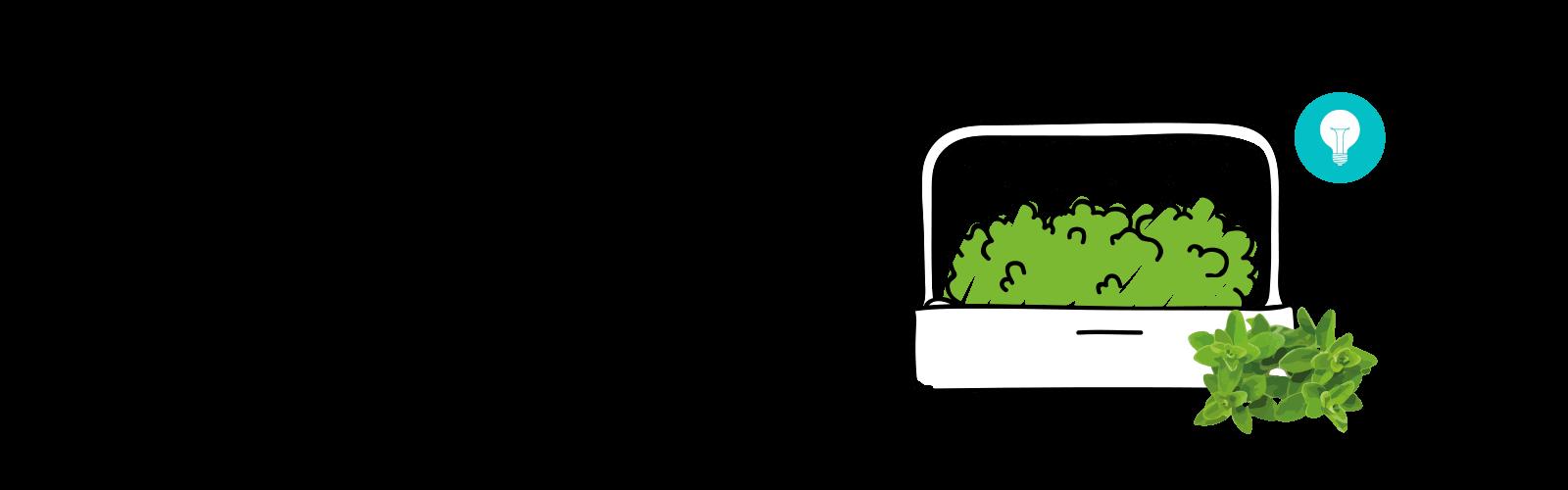huertos inteligentes Indoor Giardino