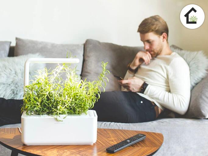 huerto click and grow smart 3
