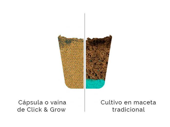 vaina de click and grow